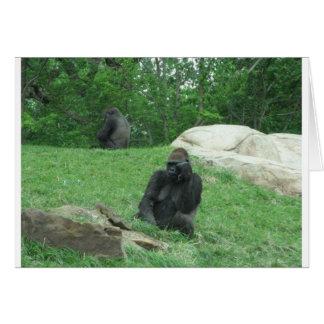 Imagen del gorila tarjetón