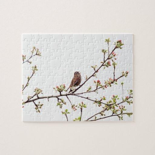 Imagen del gorrión que canta en árbol floreciente rompecabeza