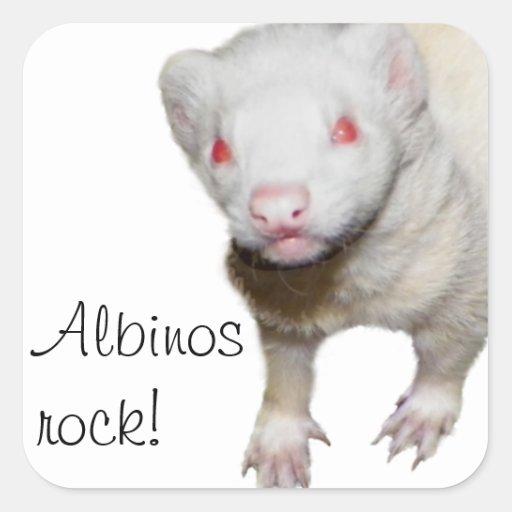 Imagen del hurón del albino pegatina cuadrada