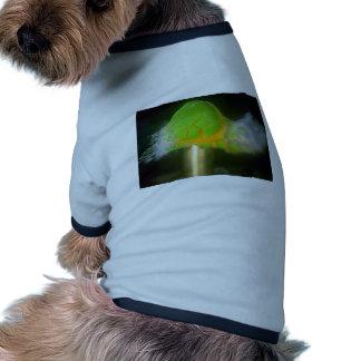Imagen del impacto de la bala, huevo ropa perro