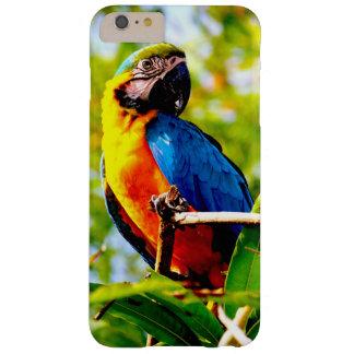 imagen del pájaro del loro funda para iPhone 6 plus barely there