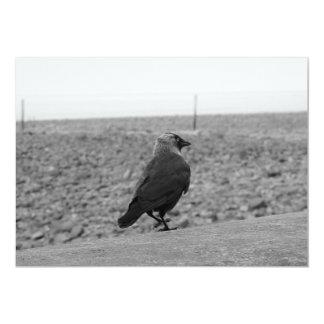 """Imagen del pájaro. Grajo Invitación 5"""" X 7"""""""