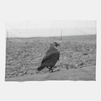 Imagen del pájaro. Grajo Toallas De Mano