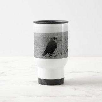 Imagen del pájaro. Grajo Tazas