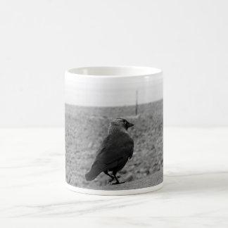 Imagen del pájaro. Grajo Tazas De Café