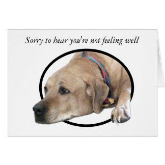 Imagen del perro de Rhodesian Ridgeback del mascot Tarjetas