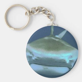 Imagen del tiburón llaveros personalizados