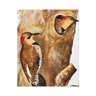 Imagen del vintage de los pájaros del parpadeo impresiones en lona