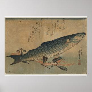 Imagen del vintage del salmonete rayado japonés -  póster