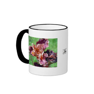 Imagen descarada del iris taza de dos colores