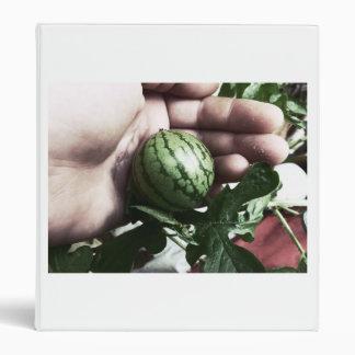 Imagen disponible de la fruta de la sandía del beb