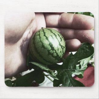 Imagen disponible de la fruta de la sandía del beb tapetes de raton