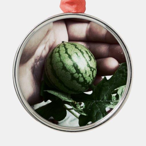 Imagen disponible de la fruta de la sandía del ornamento para arbol de navidad