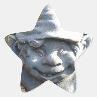 imagen divertida calcomanía forma de estrella personalizada