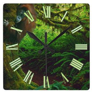 Imagen en peligro 2 del orangután y del primate de reloj cuadrado