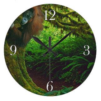 Imagen en peligro 2 del orangután y del primate de reloj redondo grande
