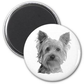 Imagen estilizada de Yorkshire Terrier Imán Redondo 5 Cm