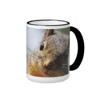 Imagen extrema de la ardilla del primer taza de café