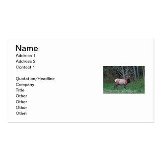 Imagen femenina de los alces tarjetas de visita