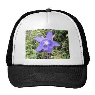 Imagen floral azul de la flor gorro de camionero