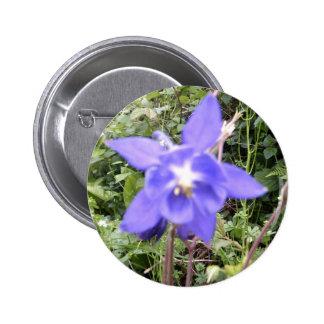 Imagen floral azul de la flor