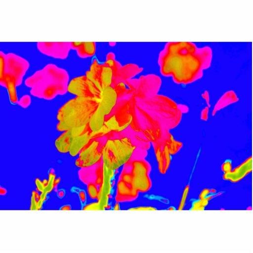 imagen floral colorida azul magenta de la flor abs esculturas fotográficas