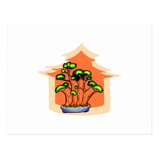 Imagen gráfica 1 del grupo de los bonsais tarjetas postales