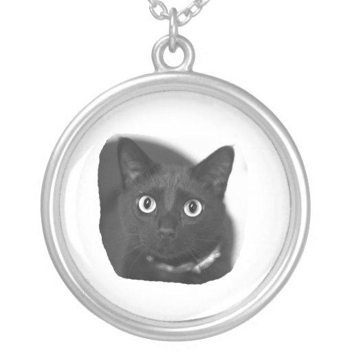 Imagen grande de BW de los ojos del gato gris Joyerías