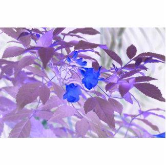 imagen invertida de las flores de las hojas azules esculturas fotograficas
