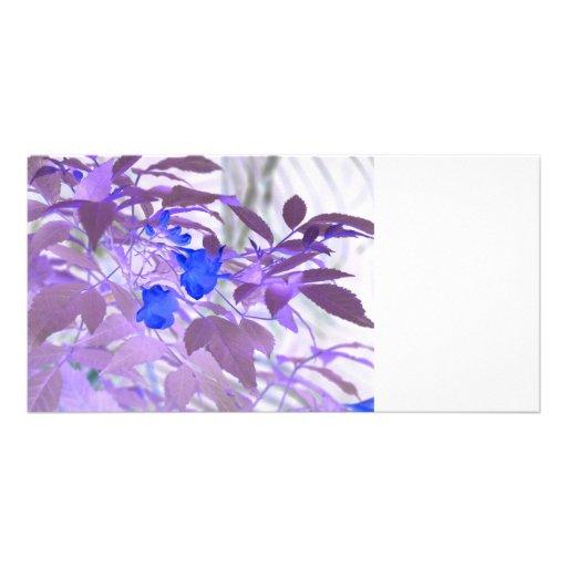 imagen invertida de las flores de las hojas azules tarjetas fotográficas personalizadas