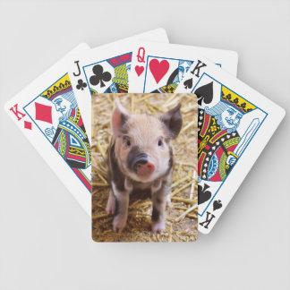 Imagen linda de un cerdo del bebé barajas de cartas