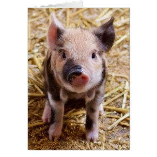 Imagen linda de un cerdo del bebé tarjeta de felicitación