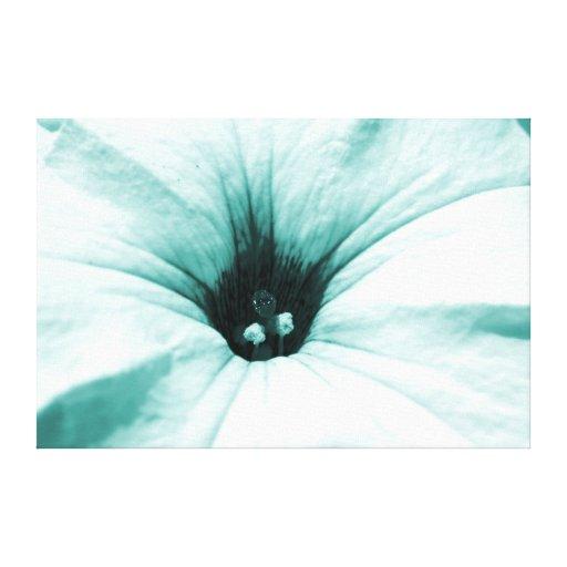 Imagen macra descolorada de la flor azul lona estirada galerias