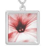 Imagen macra descolorada de la flor roja grimpola