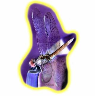 Imagen negativa 01 de la libélula adorno fotoescultura