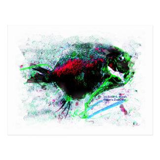 Imagen negativa colorida de un pescado secado postal