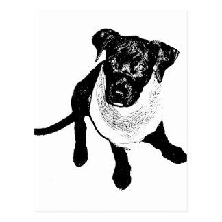 Imagen negra blanco y negro del perrito del tarjeta postal