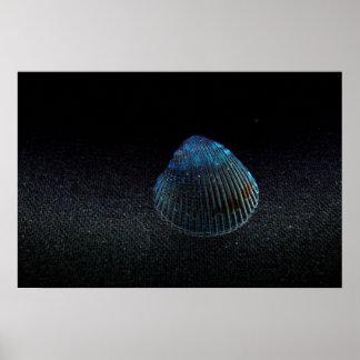 imagen oscura de la playa del seashell de la parte poster