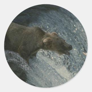 Imagen-Pesca del oso grizzly para los salmones Pegatina Redonda