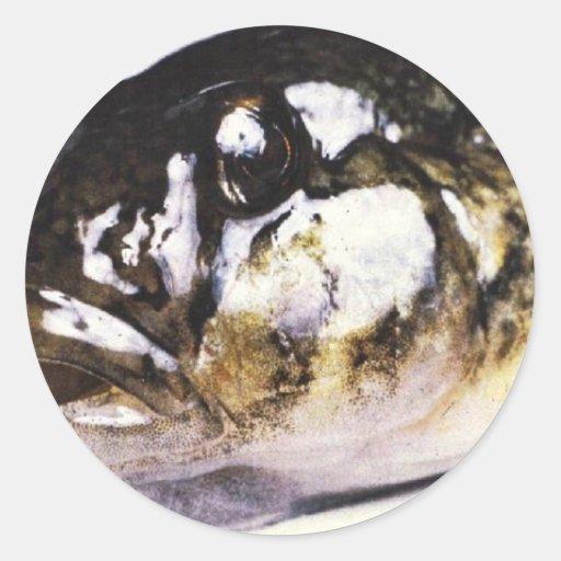 Imagen principal del gobio redondo pegatina redonda