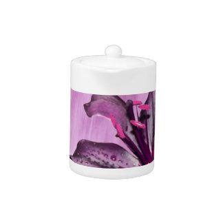 Imagen púrpura de la flor