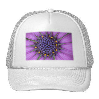 Imagen púrpura de la margarita gorros bordados