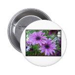 ¡Imagen púrpura de las flores! Pins