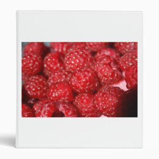imagen rasberry del diseño de la comida del primer