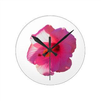 imagen rosada de la flor del hibisco reloj