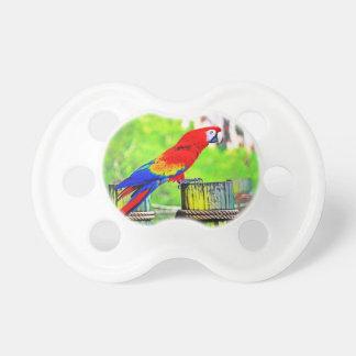 imagen saturada hdr del pájaro del macaw chupetes para bebés