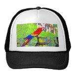 imagen saturada hdr del pájaro del macaw gorros