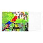 imagen saturada hdr del pájaro del macaw tarjeta con foto personalizada