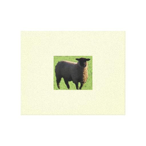 Imagen sonriente de las ovejas impresion en lona