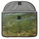 Imagen subacuática de la hierba de la charca fundas macbook pro